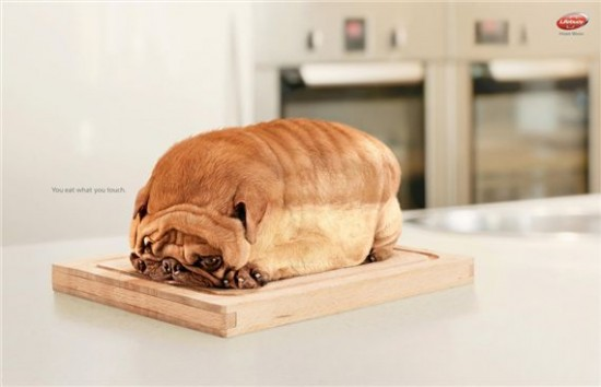 lifebuoi-dog-most-interesting-and-creative-ads