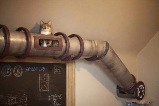 cat-transit-system-7