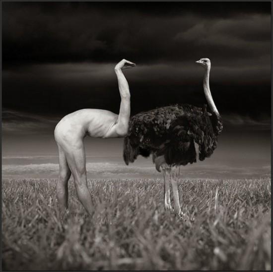 Photo-Manipulations-by-Thomas-Barbey-13