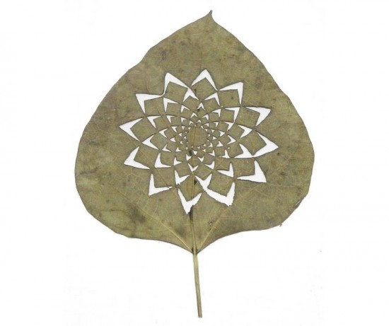 leafartcut_05