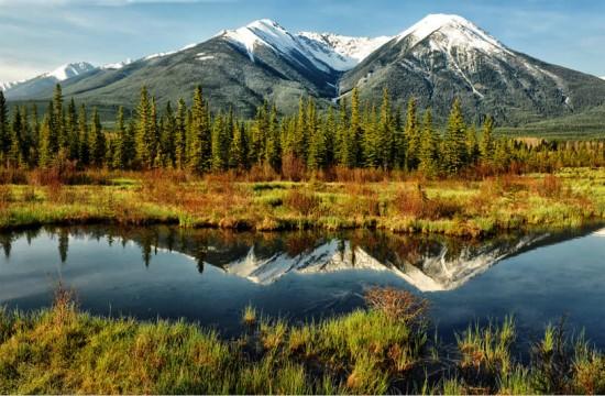 reflection-landscapes-111