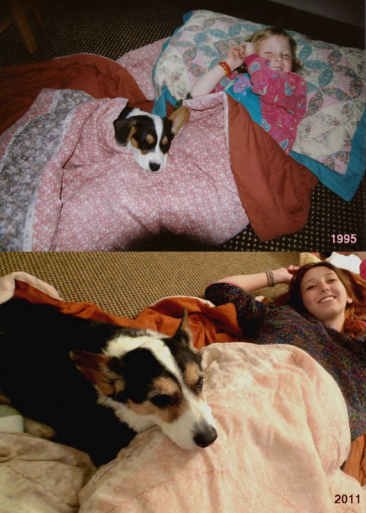 pets-growing-up-1