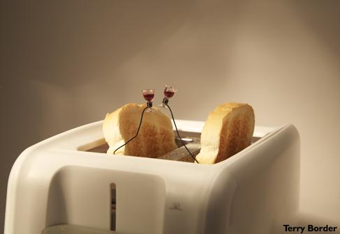 Toast-Toasting-Toast