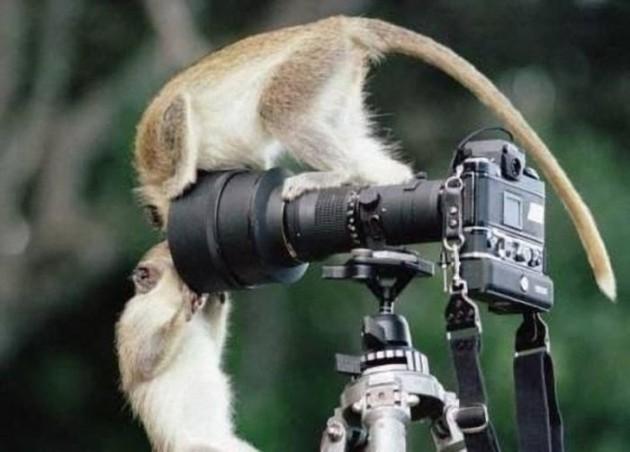 fotografo (20)
