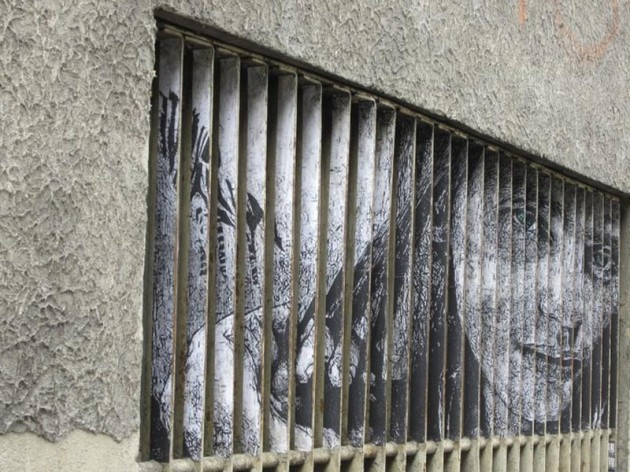 arte-urbana-diferente-de-zebrating-2