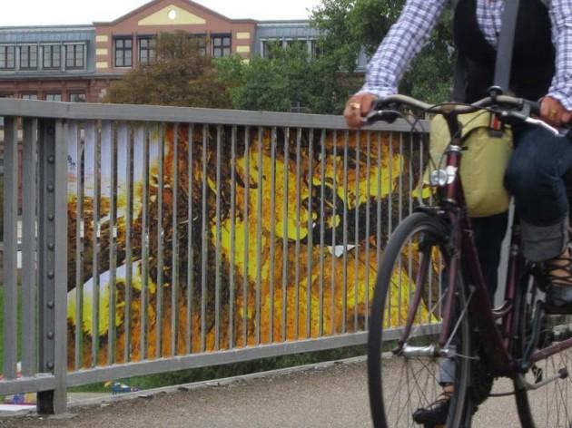 arte-urbana-diferente-de-zebrating-5