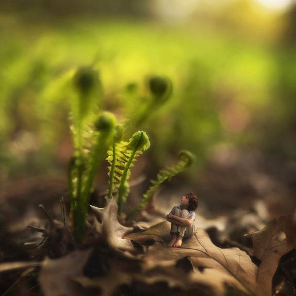 fiddle-oak-photography-8