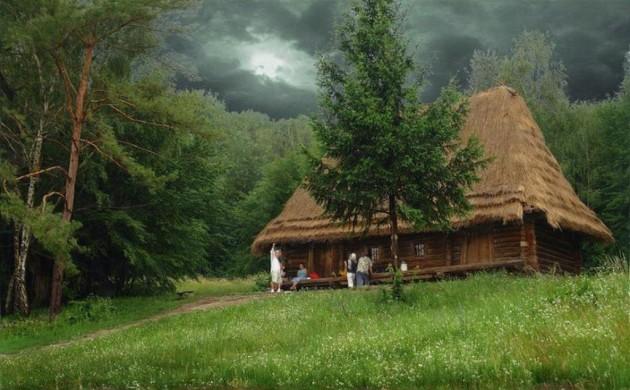 casa_floresta_07