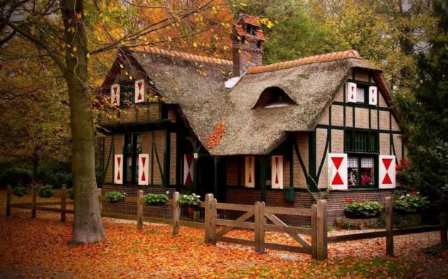 casa_floresta_08