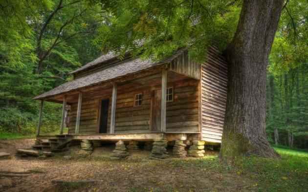 casa_floresta_12