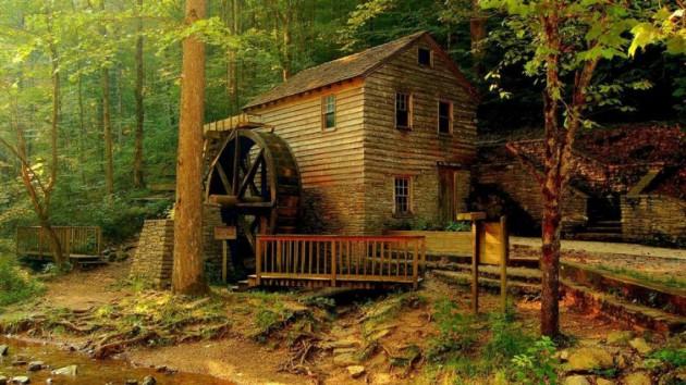 casa_floresta_13