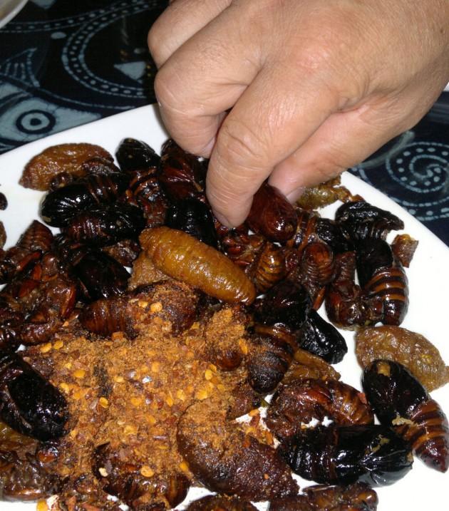 china_gourmet_insetos_37