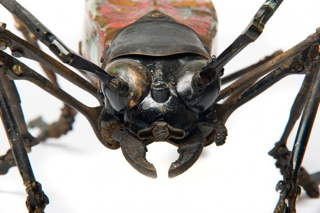 insect-sculptures-edouard-martinet-16
