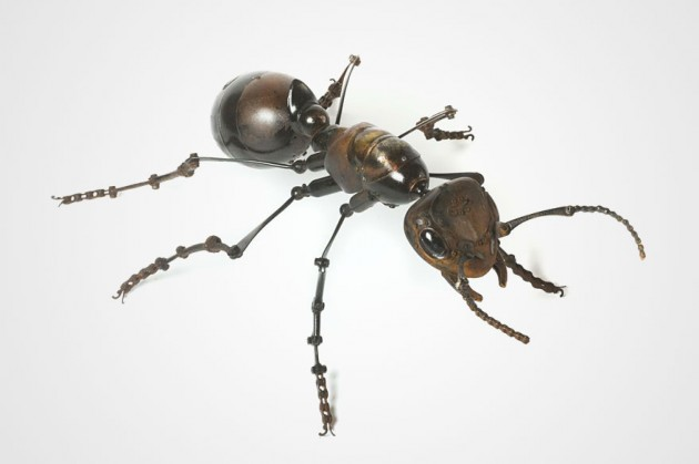 insect-sculptures-edouard-martinet-19