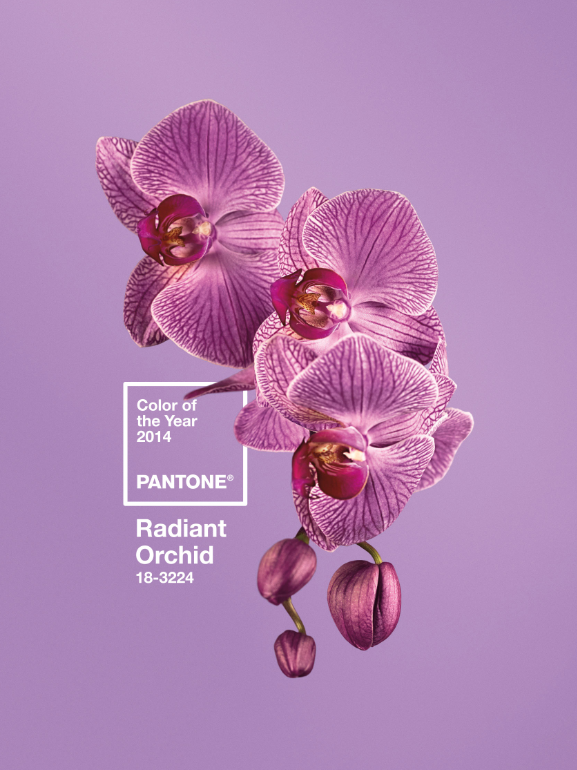pantone color of 2014