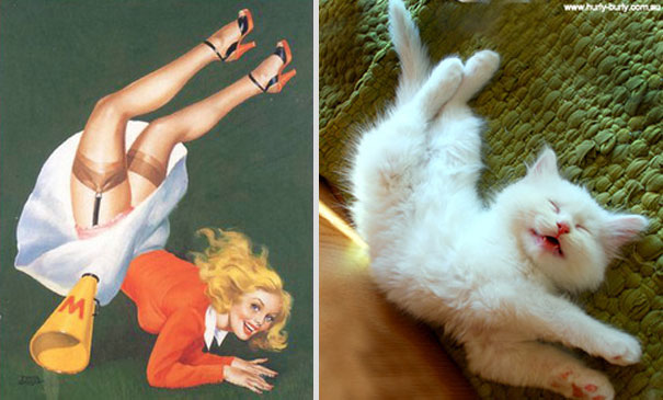 cats-that-look-like-pin-up-girls-10__605