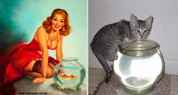 cats-that-look-like-pin-up-girls-14__605