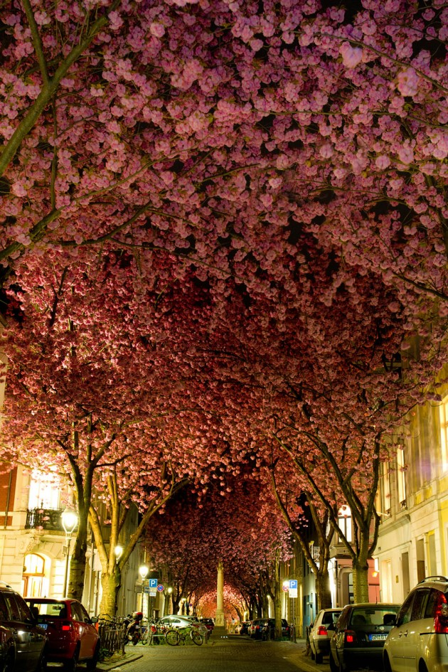 Street in Bonn, Germany