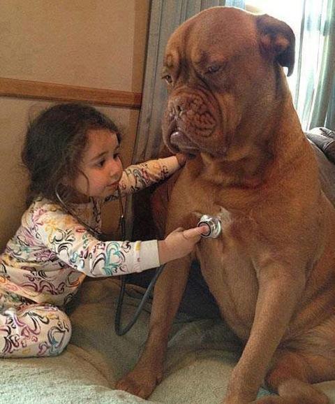 babies-need-pets-1