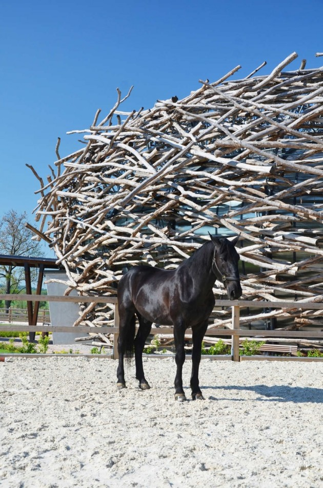1329580709_the_stork_nest_farm_sgl_projekt_1327431491_12_riding_arena