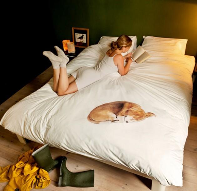 15 - Cão dormindo!