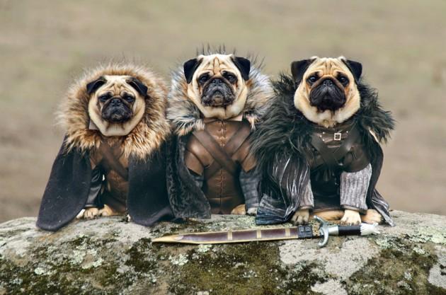 Robb Stark, Ned Stark e Jon Snow