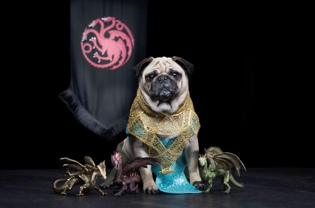 Daeneys Targaryen