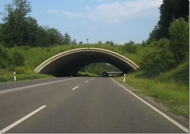 Highway 464, Alemanha