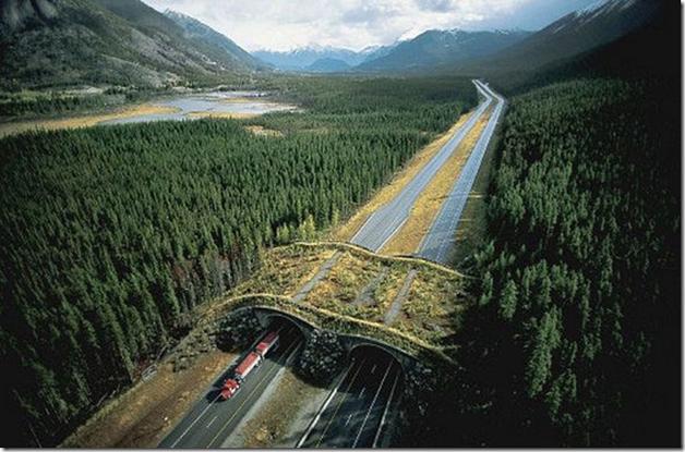 Banff National Park, Canadá