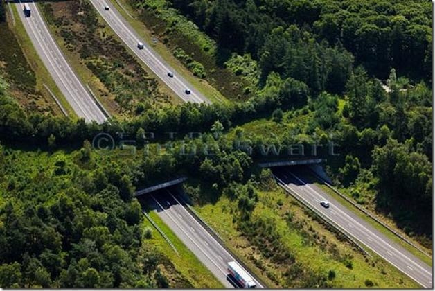 Highway A1, Holanda