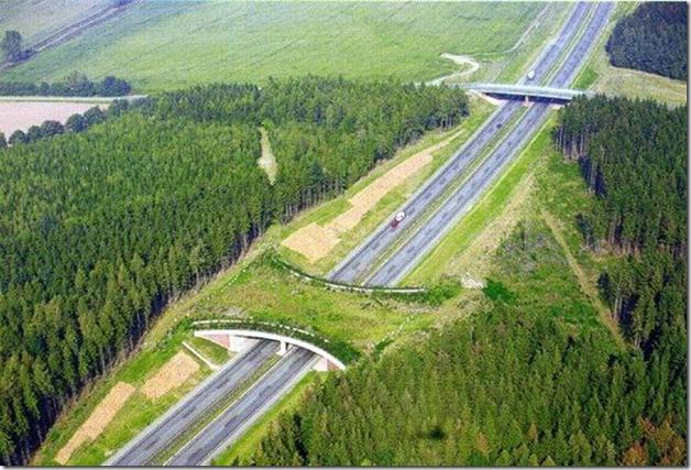 Highway A20, Alemanha