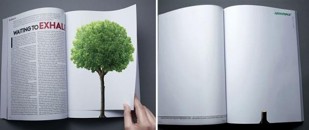 O desmatamento continua com a volta de uma página