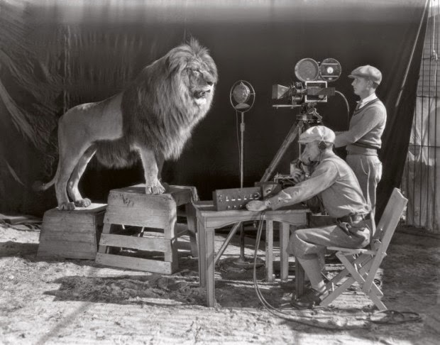 Sessão de fotos com o Leão da rede MGM