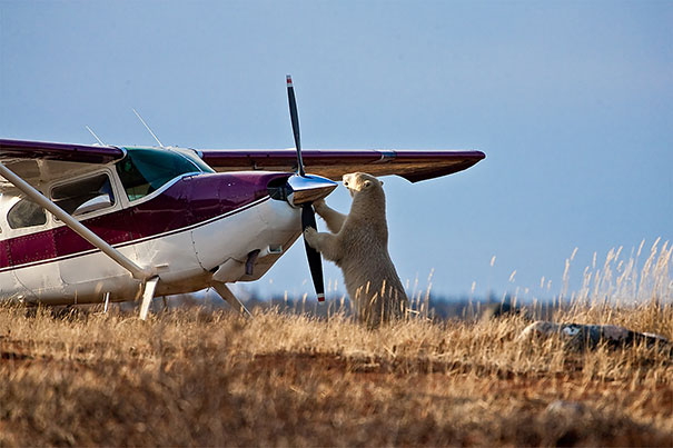 #12 - Consertam Aviões