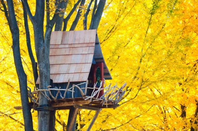 Post-The-Most-Beautiful-Treehouses-From-All-Over-The-World4__700-1
