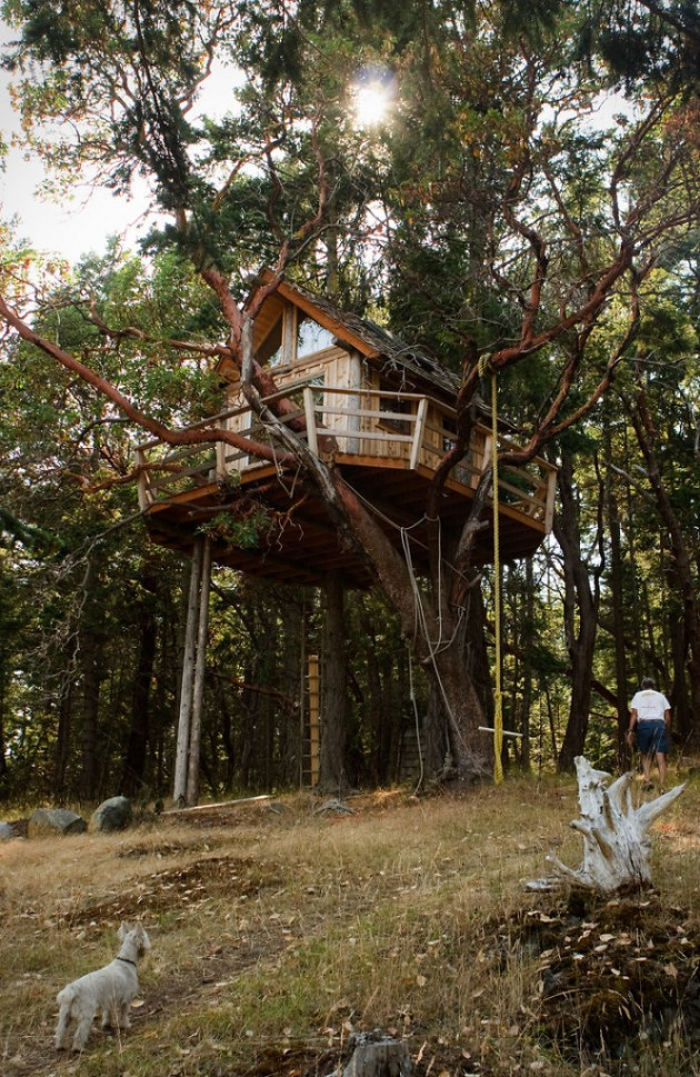 Post-The-Most-Beautiful-Treehouses-From-All-Over-The-World__700