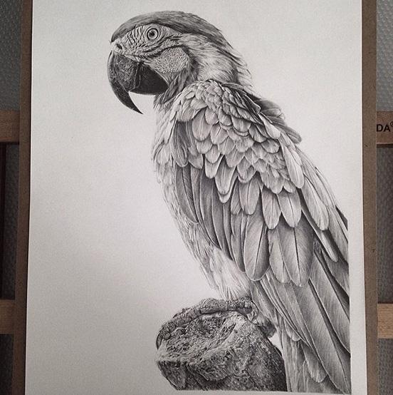 Realistic-Drawings-001