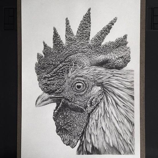 Realistic-Drawings-014
