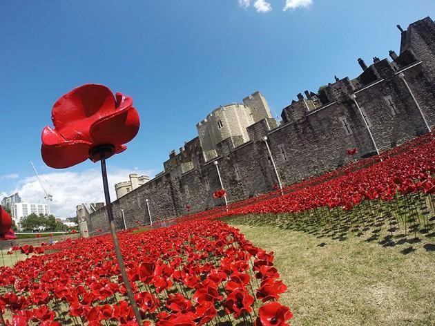 ceramic-poppies-first-world-war-installation-london-tower-3