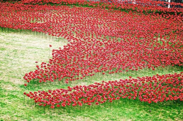 ceramic-poppies-first-world-war-installation-london-tower-5