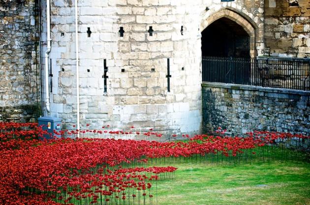 ceramic-poppies-first-world-war-installation-london-tower-6