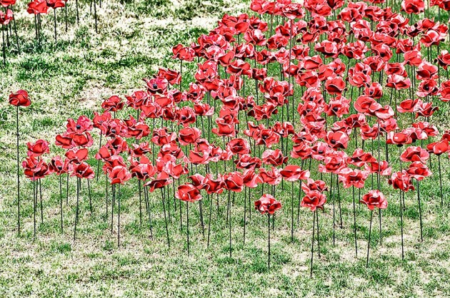 ceramic-poppies-first-world-war-installation-london-tower-9