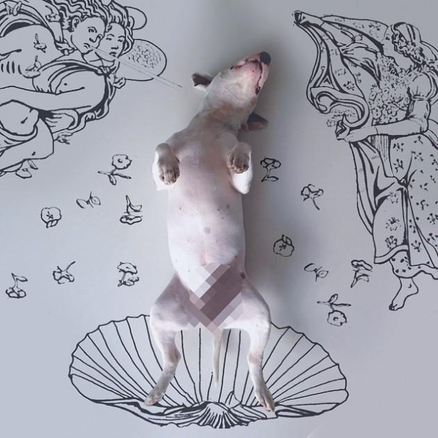jimmy-choo-bull-terrier-illustrations-rafael-mantesso-12