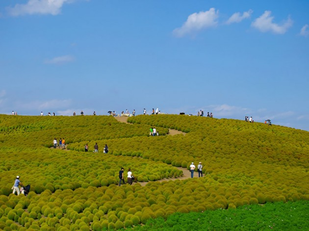 Parque Hitachi, Japão