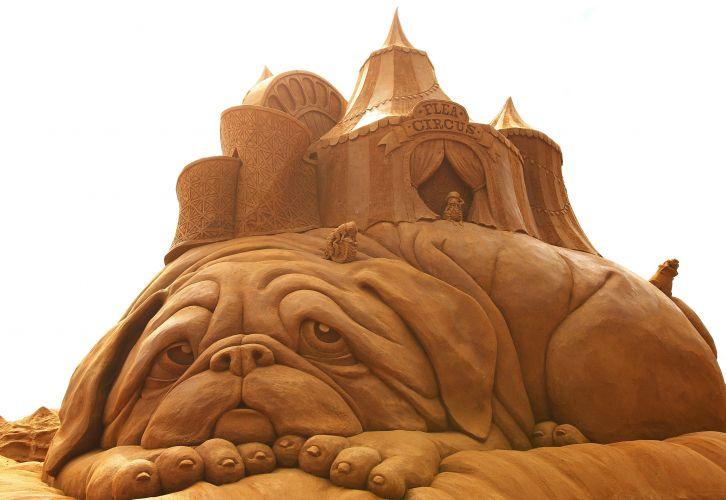 esculturas_de_areia_2010_f_003