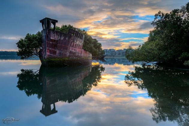 #3 - Floresta Flutuante de 102 anos em um Navio em Sidney, Austrália