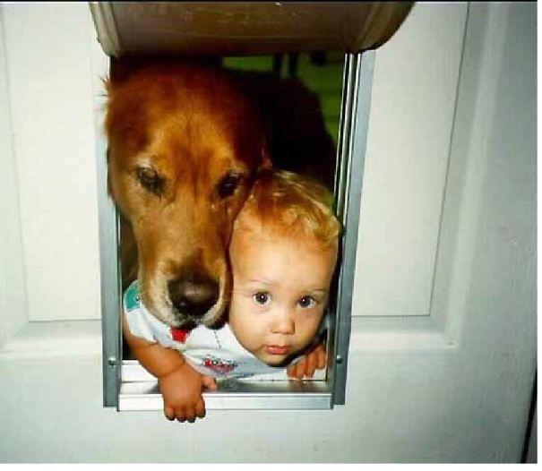 kid-like-dog1__605