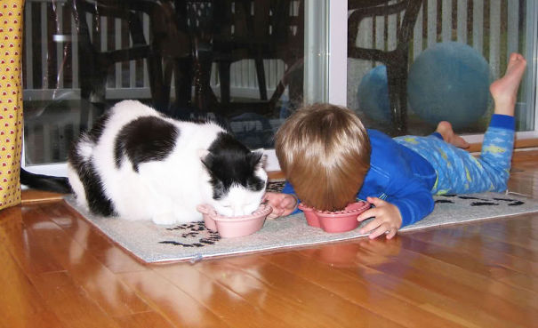 kids-act-like-animals-eating-cat-food__605