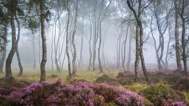 Stanton Moor, Reino Unido