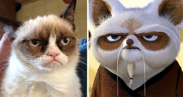 Grumpy Cat e Master Shifu do Kung Fu Panda